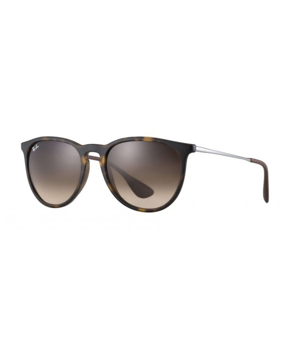 Ray Ban Erika Classic Tortoise Gunmetal, Brown Gradient Sunglasses